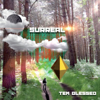 Surreal — Tem Blessed