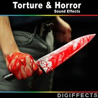 Torture and Horror Sound Effects — Digiffects Sound Effects Library