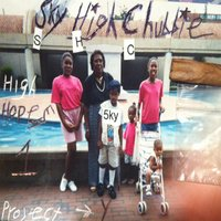 High Hopes, Vol. 1: Project Y — Sky High Chubbie