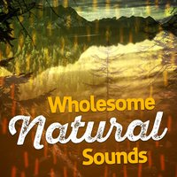 Wholesome Natural Sounds — Nature Sounds Therapy