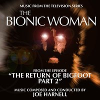 The Bionic Woman: The Return of Bigfoot Part 2 - Music from the Television Series — Joe Harnell