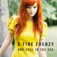One Cell In The Sea — A Fine Frenzy