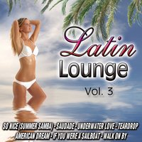 Latin Lounge Vol.3 — D.J. Chill