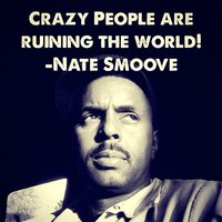 Crazy People Are Ruining the World (feat. Robbie Hunt) — Nate Smoove