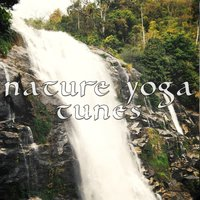 Nature Yoga Tunes, Vol. 1 — сборник