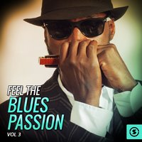 Feel the Blues Passion, Vol. 3 — сборник