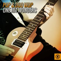 Pop & Doo Wop One Hit Wonders — сборник