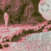 Familiar Strange — Maths And The Moon