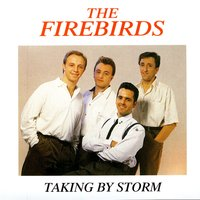 Taking by Storm — The Firebirds, Andy Allan