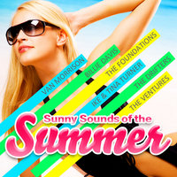 Sunny Sounds of the Summer — The Trashmen