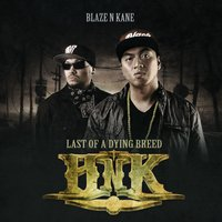 Last of a Dying Breed — Blaze N Kane
