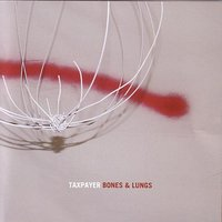 Bones & Lungs — Taxpayer