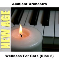 Wellness For Cats (Disc 2) — Ambient Orchestra