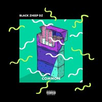 Common — Black Zheep DZ