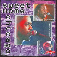 Sweet Home Chicago — Barry Goldberg, Harvey Mandel, Charlie Musselwhite, Mike Bloomfeild, Robben Ford,and many others