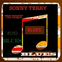 The Unique — Sonny Terry