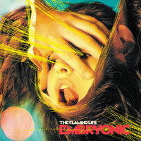 Embryonic — The Flaming Lips