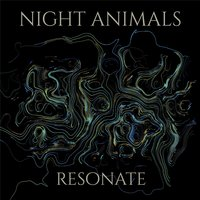 Resonate — Night Animals