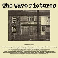 Strawberry Cables — The Wave Pictures