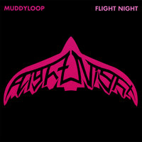 Flight Night — Muddyloop