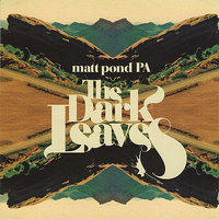The Dark Leaves — Matt Pond PA