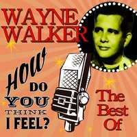 How Do You Think I Feel: The Best Of — Wayne Walker