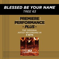 Blessed Be Your Name (Premiere Performance Plus Track) — Tree63
