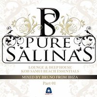 Pure Salinas, Vol. 2 (Compiled By Bruno from Ibiza) — Bruno From Ibiza