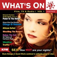 What's on – Volume 1 — Andrew Glen