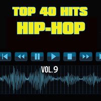 Top 40 Hits Hip Hop, Vol. 9 — Top 40 Hits