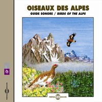 Oiseaux des Alpes - Birds of the Alps — Frémeaux Nature