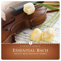 Essential Bach — Dirk Freymuth