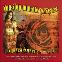 Non-Stop Mulatós Party, Vol. 22 — сборник