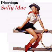 Sally Mae — Triceratops
