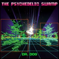 The Psychedelic Swamp — Dr. Dog