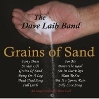 Grains of Sand — The David Laib Band
