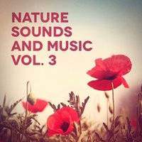 Nature Sounds and Music, Vol. 3 — сборник