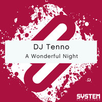 A Wonderful Night - Single — DJ Tenno