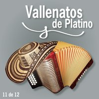Vallenatos De Platino Vol. 11 — сборник