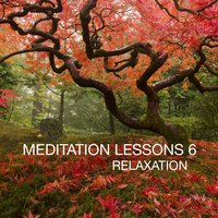 Meditation Lesson, Vol. 6 — сборник