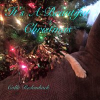 It's a Beautiful Christmas — Colin Rickenback