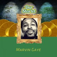 Our Starlet — Marvin Gaye