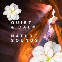 Quiet & Calm: Nature Sounds — Soothing Sounds