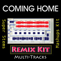 Coming Home (Multi Tracks Tribute to Diddy - Dirty Money & Skylar Grey ) — REMIX Kit