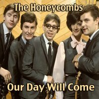 Our Day Will Come — The Honeycombs