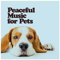 Peaceful Music for Pets — Peaceful Music