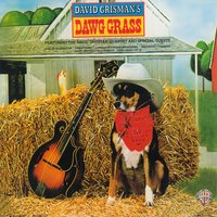 Dawg Grass — David Grisman