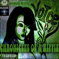 Chronicles of a Hippie Vol. 4 — Voice A True Gogetta