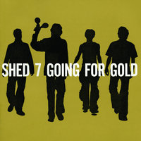 Going For Gold — Shed Seven