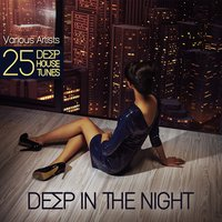 Deep in the Night (25 Deep House Tunes) — сборник